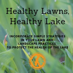 healthy lawns healthy lake