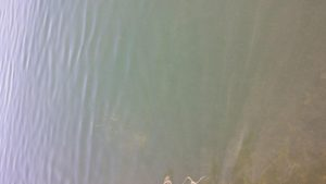1228a_Onanda_Fishing_Pier